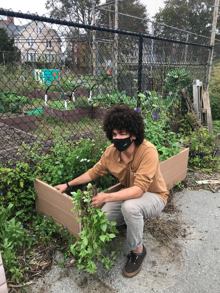 A FRESH volunteer poses with the herb boxes outside the Mercer St garden.